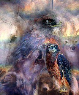 Zwierze Mocy