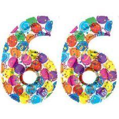 liczba 66