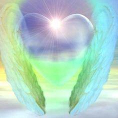 aniol kwiatu 7