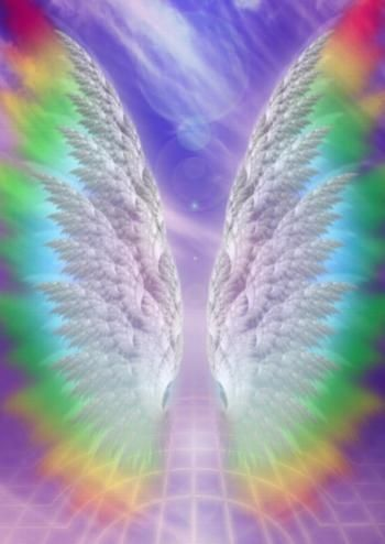 aniol kwiatu 8