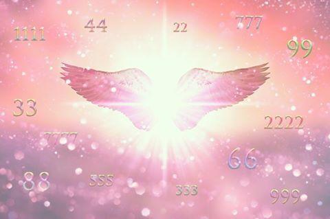 aniol liczb 8