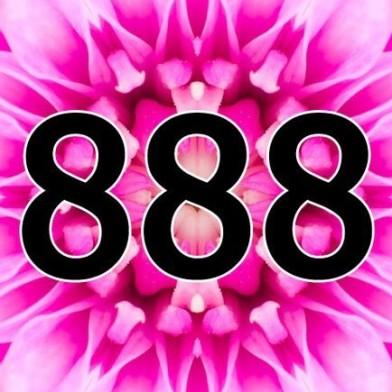 Aniol liczby 888
